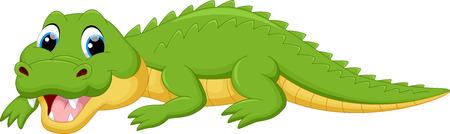 cartoon crocodile: Vector illustration of crocodile cartoon