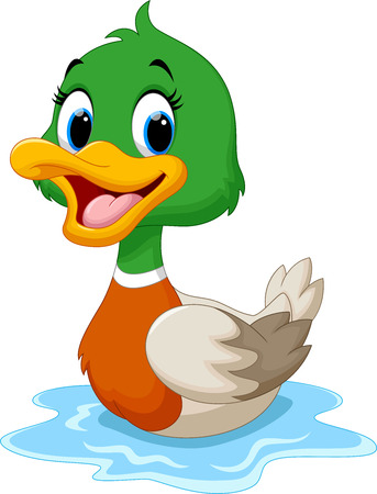 poultry animals: Cartoon duck swimming