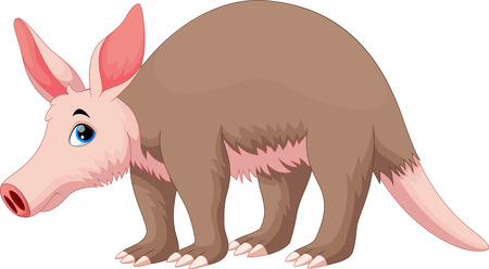 humor: Vector illustration of Aardvark cartoon Illustration