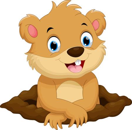 castor: de dibujos animados lindo de la marmota Vectores