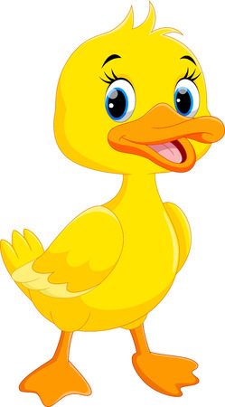 cartoon chicken: Cute duck cartoon isolated on white background Illustration