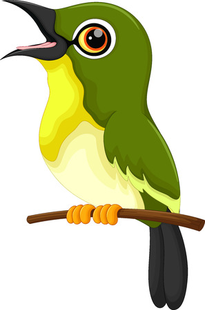 birdsong: Cute green bird cartoon singing Illustration