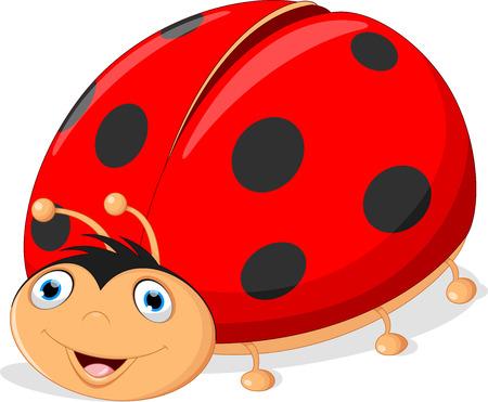 Vector illustration of cute ladybug cartoon