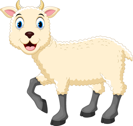 Vector illustration of cute sheep cartoon isolated on white background