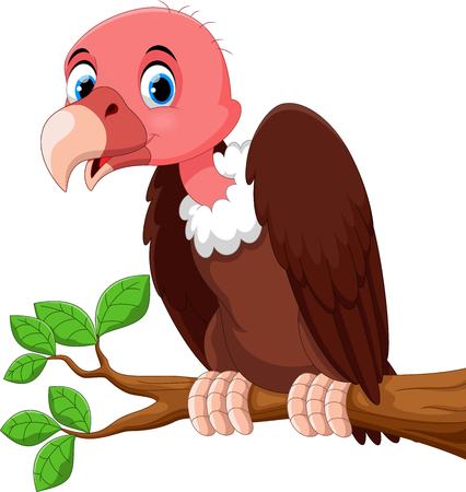 Dibujos animados lindo pájaro buitre en la rama de árbol