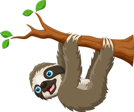Cartoon cute sloth hanging on the tree Illustration