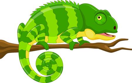 Vector illustratie van cartoon groene kameleon geïsoleerd op een witte achtergrond