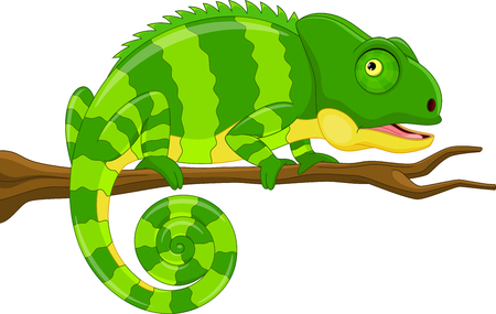 Vector illustration of cartoon green chameleon isolated on white background Иллюстрация