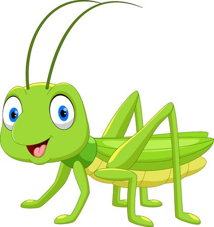 Cute grasshopper cartoon isolated on white background Illustration