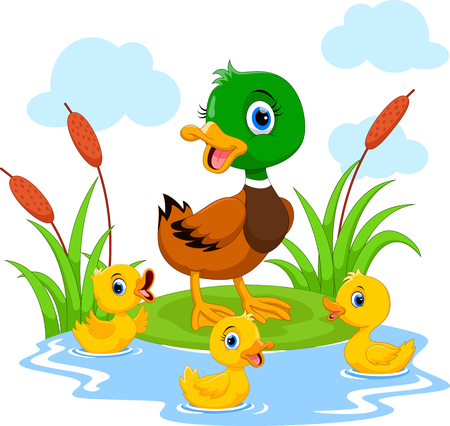 Mother duck swims with her three little cute ducklings in the pond Ilustração