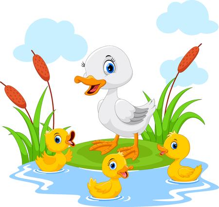 Moeder eend zwemt met haar drie kleine schattige eendjes in de vijver