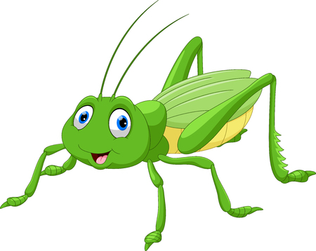 Cute grasshopper cartoon Illustration