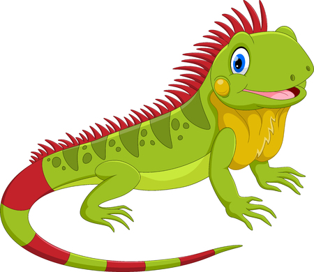 Vector illustration of cute iguana cartoon isolated on white background Çizim