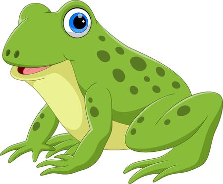 Vektorillustration der netten Froschkarikatur auf weißem Hintergrund Vektorgrafik
