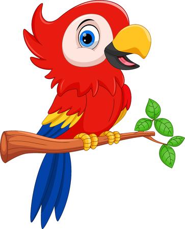 Illustration vectorielle de perroquet de dessin animé sur une branche d'arbre isolé sur fond blanc