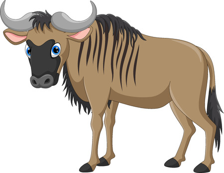Vector illustration of cute and adorable wildebeest cartoon isolated on white background
