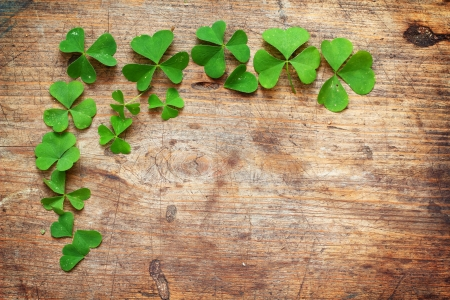 Green shamrock leaves on wooden background photo