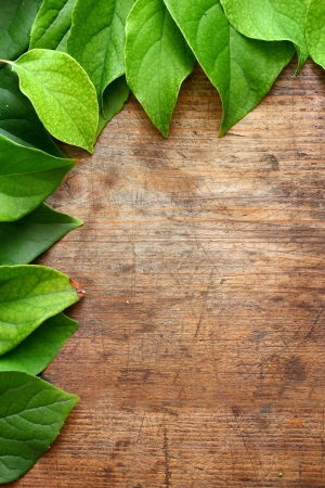 Green leaves on wooden background Stock Photo - 16776482