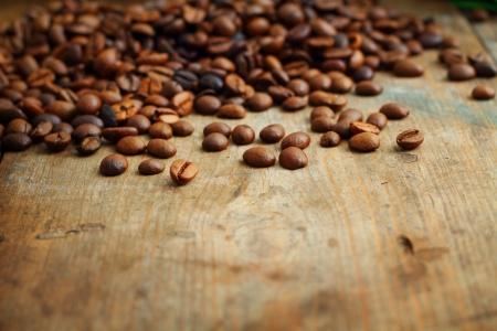 planta de cafe: Caf� en el fondo de madera del grunge