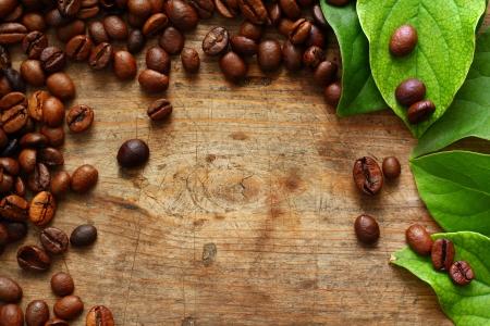 grano de cafe: Caf� en el fondo de madera con hojas verdes