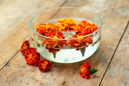 tagetes: Orange flowers (Tagetes) spa in glass bowl on wooden background