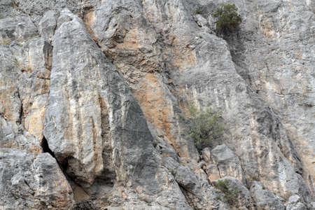 Rock texture Stock Photo - 16776496