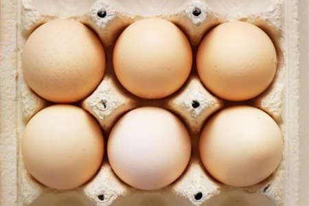 Chiken eggs in carton box Stock Photo
