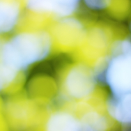 Natural green blured background with bokeh