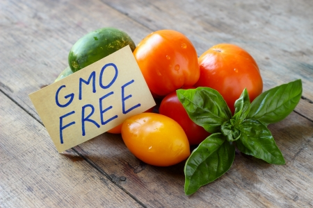 Fresh vegetables with the card GMO Free Stock Photo