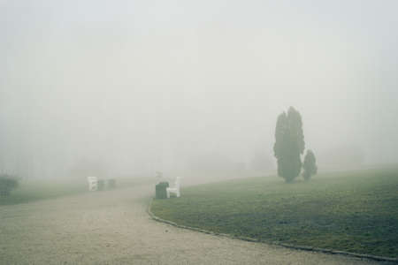 Mist in the park Stock Photo