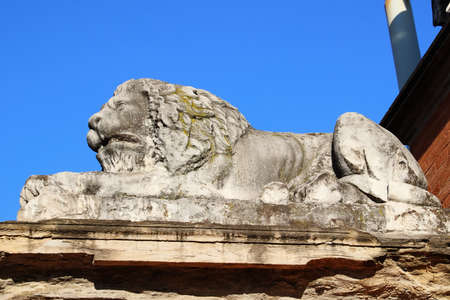 stone lion: Stone lion statue in Parma, Italy Stock Photo