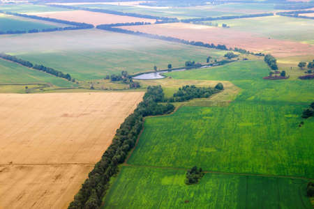 cropland: Aerial view of seeded fields. Agricultural landscape.