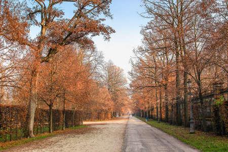ducale: Ducale park in Parma, Emilia Romagna region,Italy.