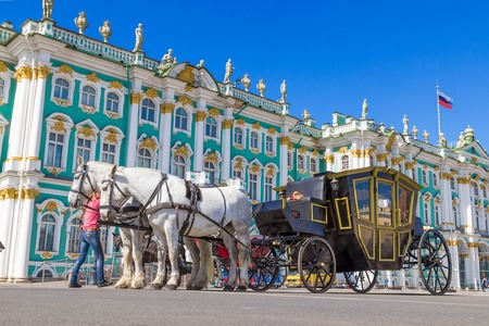 SAINT PETERSBURG, RUSSIA - MAY 25, 2015: White horses and black carriage standing on the square in front of Hermitage palace in Saint Petersburg, Russia.