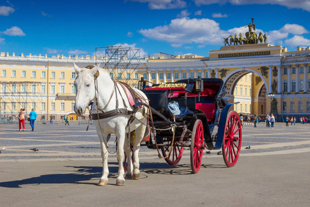 SAINT PETERSBURG, RUSSIA - MAY 25, 2015: White horse in harness with open cab on historical Palace square in Saint Petersburg, Russia.