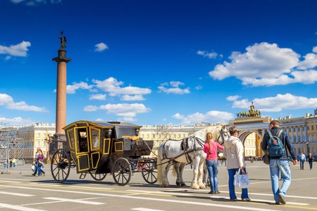 SAINT PETERSBURG, RUSSIA - MAY 25, 2015: White horses with traditional carriage standing on Palace square in Saint Petersburg, Russia.