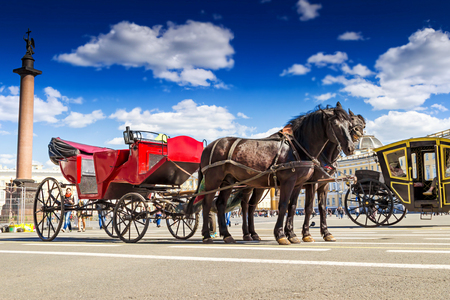 SAINT PETERSBURG, RUSSIA - MAY 25, 2015: Two horse with red carriage on Palace square in Saint Petersburg, Russia.