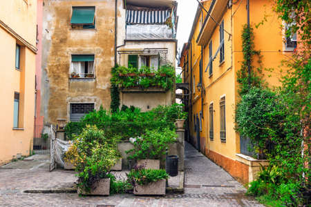 Old patio with green plants in Sarzana, Italy.