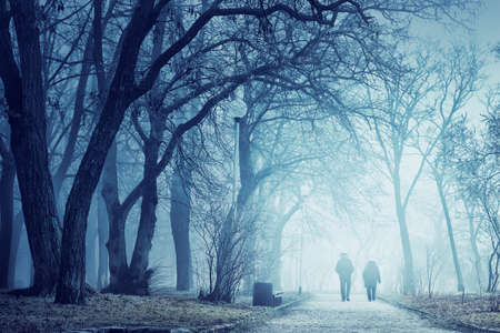 Misty weather in the park. Two people walking. Stock Photo
