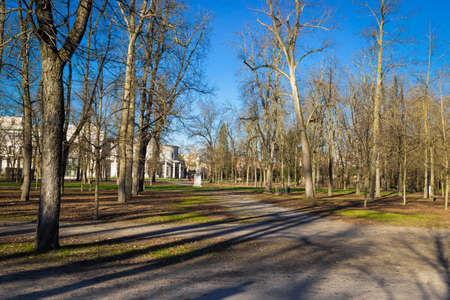 Ducale park with old big trees in Parma, Italy