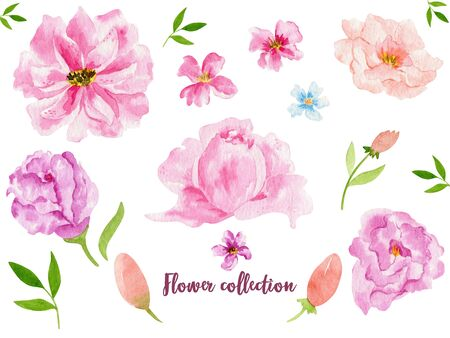 Watercolor floral items. Watercolour bohemian natural frame: leaves, flowers, Isolated on white background.