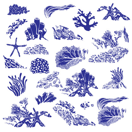 Coral reef and underwater flora. Corals, polyps, seaweed and deep water plants.Vector Illustration