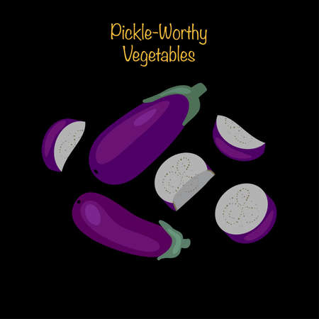 Pickle-worthy vegetables - whole and sliced eggplants. Vector Illustration