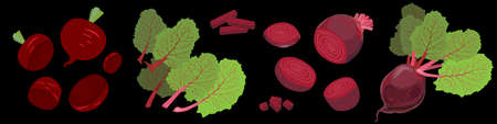 Set of beets. Whole and sliced beetroots with leaves. Vector Illustration