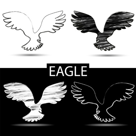 bird silhouette: Bird silhouette. Black and white drawing eagle