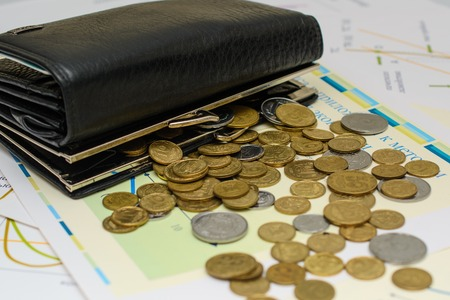 change purses: Money. Purse with coins. Stock Photo