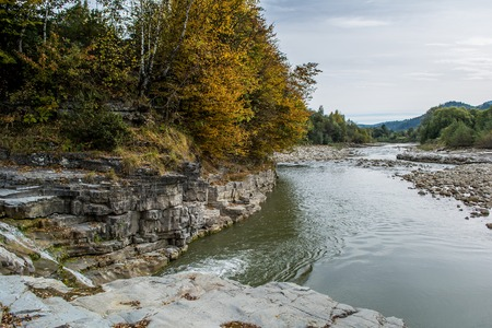 pine creek: Carpathians. Carpathian Mountains, Ukraine. Stock Photo