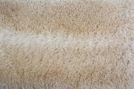 mink: Bright fur mink. Fur texture.