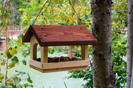 Bird feeders. Wooden racks for birds on a tree.