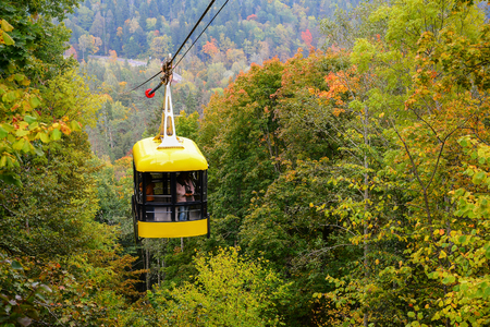 Sigulda cable car for traveling through the Gauja valley, Latvia. Panoramic view of leaf fall forest. Autumn landscape on cool, cloudy day.